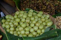 Groseille à maquereau indienne, emblica myrablan, arbre du Malacca et x28 ; Emblica L de Phyllanthus et x29 ; Photo libre de droits