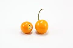 Groseille à maquereau jaune-orange Image libre de droits