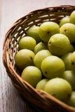 Groseille à maquereau ou fruit indienne d'Amla ou d'avla, foyer sélectif Images libres de droits