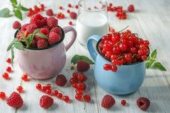 Groseille rouge et framboises Image stock