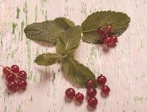 Groseille rouge mûre avec des feuilles sur un fond en bois Type de cru photos libres de droits