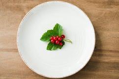 Groseille rouge organique mûre fraîche dans le plat Photographie stock libre de droits