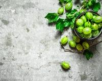 Groseilles à maquereau et feuilles dans une tasse Sur la table en pierre Image libre de droits