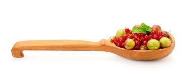 Groseilles à maquereau et groseilles rouges dans la cuillère en bois d'isolement sur le blanc Photo stock