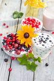 Groseilles de fruit de cocktails de jardin de ressort Photos libres de droits