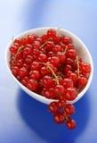 Groseilles rouges dans une cuvette Image libre de droits