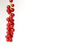 Groseilles rouges sur un fond Photos libres de droits