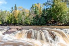 A groselha cai correndo através de Minnesota Autumn Colors imagem de stock royalty free