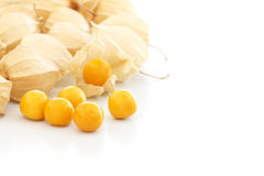 Groselha de cabo (physalis) Foto de Stock Royalty Free