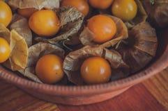 Groselha de cabo & x28; Physalis& x29; fruto saudável foto de stock