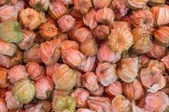Grosella espinosa de cabo fresca Foto de archivo