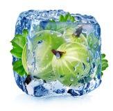 Grosella espinosa en cubo de hielo Fotografía de archivo