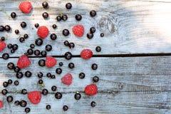 Grosella negra y frambuesa roja fragantes, de cosecha propia, dispersadas en textura gris del fondo Fotografía de archivo