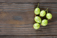Grosellas espinosas frescas Fotos de archivo libres de regalías