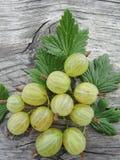 Grosellas espinosas verdes Fotografía de archivo
