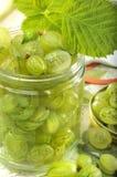 Grosellas espinosas verdes en tarro Fotografía de archivo libre de regalías