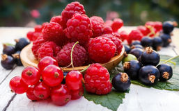 Grosellas frescas de las frambuesas de la baya del jardín, rojas y negras Bayas frescas en platos de madera Imagen de archivo libre de regalías
