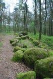 Gross-steingrab Freren Stock Photography