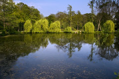 grossboehla jeziora park Zdjęcia Royalty Free