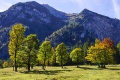 Grosser Ahornboden, Tirol, Austria Fotografia Stock