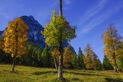 Grosser Ahornboden, Tirol, Austria Obrazy Stock