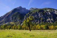 Grosser Ahornboden, Tirol, Austria Obraz Stock