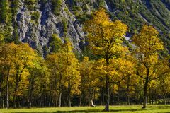 Grosser Ahornboden, Tirol, Austria Zdjęcie Royalty Free