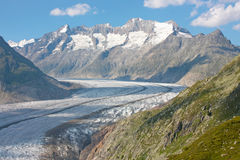 Grosser Aletschgletcher (glacier) Royalty Free Stock Photography