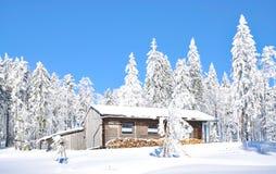Grosser Arber, βαυαρικό δάσος, Γερμανία Στοκ Εικόνα