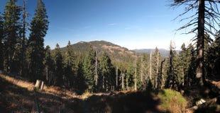 Grosser Arber σε Bayerischer Wald Στοκ Φωτογραφίες