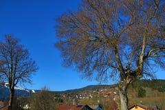 Grosser Arber, χειμερινό τοπίο γύρω από Bayerisch Eisenstein, χιονοδρομικό κέντρο, Βοημίας δάσος (Šumava), Γερμανία Στοκ Εικόνα