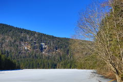 Grosser Arber See, Winter landscape around Bayerisch Eisenstein, ski resort, Bohemian Forest (Åumava), Germany Royalty Free Stock Photos
