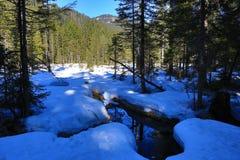 Grosser Arber See, Winter landscape around Bayerisch Eisenstein, ski resort, Bohemian Forest (Åumava), Germany Stock Photo
