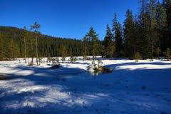Grosser Arber See, Winter landscape around Bayerisch Eisenstein, ski resort, Bohemian Forest (Åumava), Germany Royalty Free Stock Photography