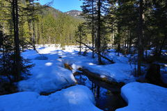 Grosser Arber See, Winter landscape around Bayerisch Eisenstein, ski resort, Bohemian Forest (Šumava), Germany. A Picture of the Grosser Arber See, winter Stock Photo