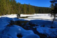Grosser Arber See, Winter landscape around Bayerisch Eisenstein, ski resort, Bohemian Forest (Šumava), Germany Royalty Free Stock Photo