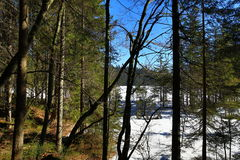 Grosser Arber See, Winter landscape around Bayerisch Eisenstein, ski resort, Bohemian Forest (Šumava), Germany. A Picture of the Grosser Arber See, winter Stock Images