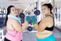 Grosses femmes faisant une séance d'entraînement avec des haltères Photographie stock