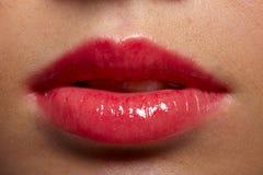 Grosses languettes Photographie stock libre de droits