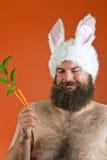 Grosses oreilles de lapin d'homme Image stock