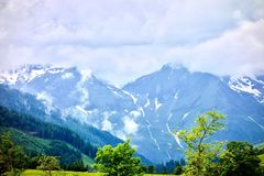 Grossglockner alpine mountain with a snowy peaks under a foggy sky at Austria. With trees in the foreground Stock Photos