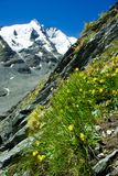 Grossglockner glacier. The Grossglockner glacier in Alps, Austria Stock Photos
