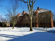 Grossman Library of the Harvard University in Cambridge. Photo of the Grossman Library of the Harvard University in Cambridge, MA, USA captured on a sunny winter Royalty Free Stock Photos