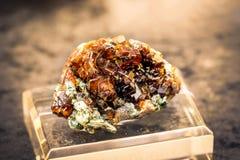 Grosularu hessonite gemstone kopalna pomarańczowa kwarcowa winieta Zdjęcia Stock