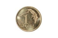 Groszy одно польский злотый Валюта Польши Фото макроса монетки Польша показывает монетку groszy Одн-заполированности Стоковая Фотография RF