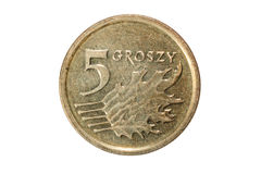 5 groszy польский злотый Валюта Польши Фото макроса монетки Польша показывает монетку groszy 5-заполированности Стоковое Изображение RF