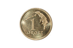Groszy uno Zloty polaco La moneda de Polonia Foto macra de una moneda Polonia representa una moneda de los groszy del Uno-pulimen Fotografía de archivo libre de regalías