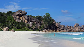 Grote Anse, het eiland van La Digue, Seychellen Royalty-vrije Stock Foto