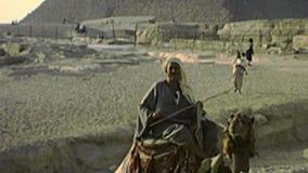 Grote archivistische Sfinx van Giza stock video