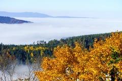 Grote bewolking over de Elzas Mening vanaf bovenkant van de berg stock fotografie